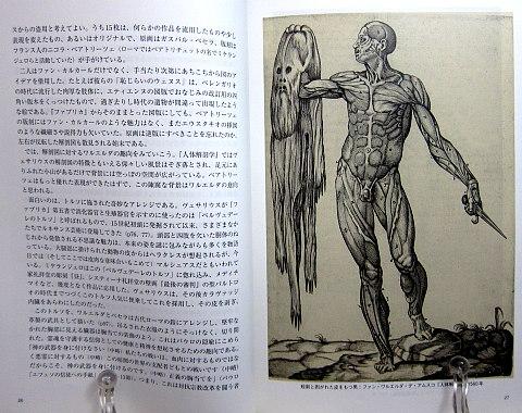 人体解剖図中身01