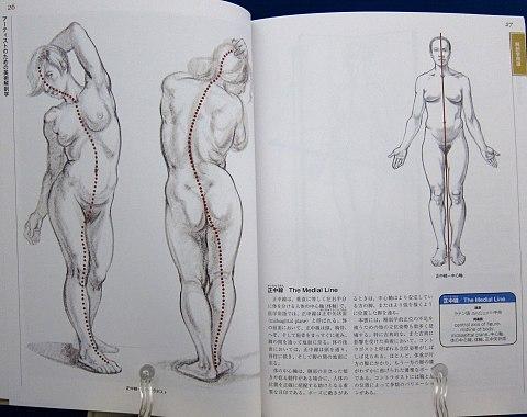 アーティストのための美術解剖学中身01