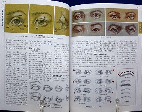 アーティストのための美術解剖学中身04