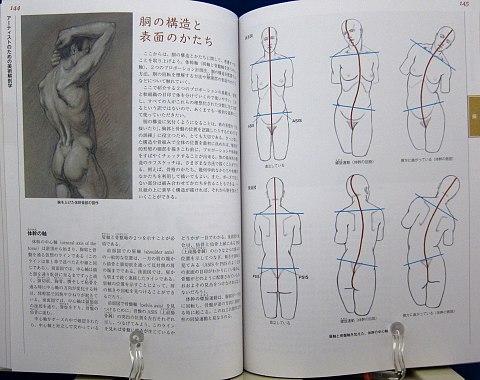 アーティストのための美術解剖学中身07