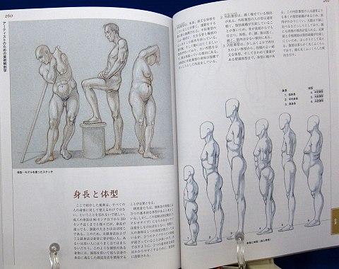 アーティストのための美術解剖学中身10