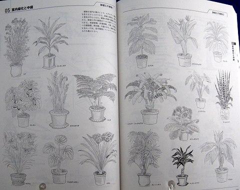 図解ですべてわかる世界の装飾デザイン見本帳中身07