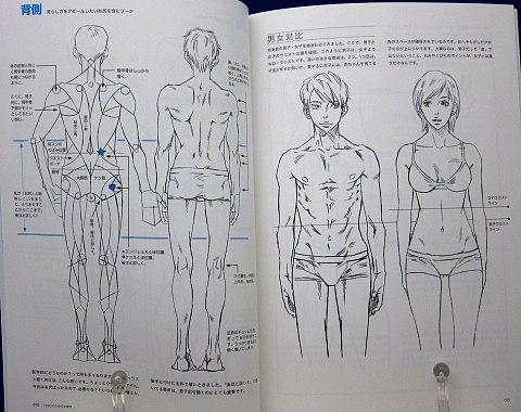 男のお尻の描き方中身03