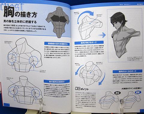 魅せる!男の筋肉を描く中身02