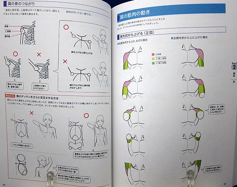 「身体」描き方事典中身05
