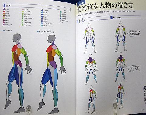 「身体」描き方事典中身10