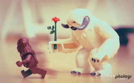 ワンパの恋