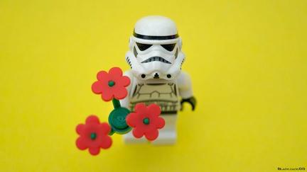 ストーム・トルーパーに花束を