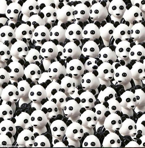 LEGOパンダの中のLEGO犬を探せ!