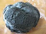 石炭シュークリーム