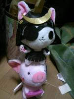 独眼流猫と、羽根付き豚