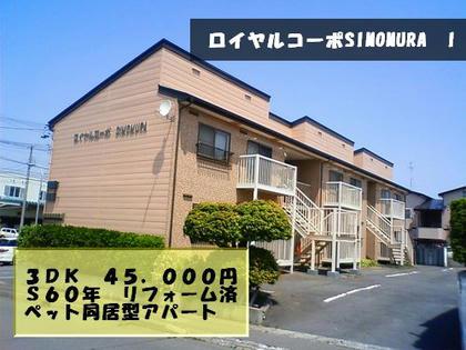 NEC_0659.jpg
