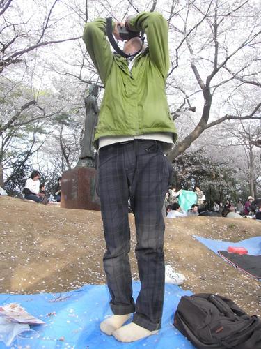 hanami02.jpg