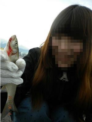 2011-06-14-005 小樽港 ウグイ