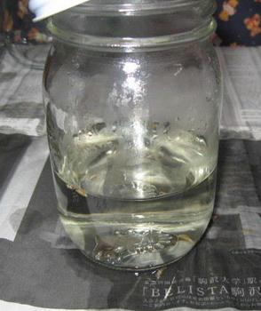 芳香蒸留水