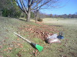 公園の清掃作業