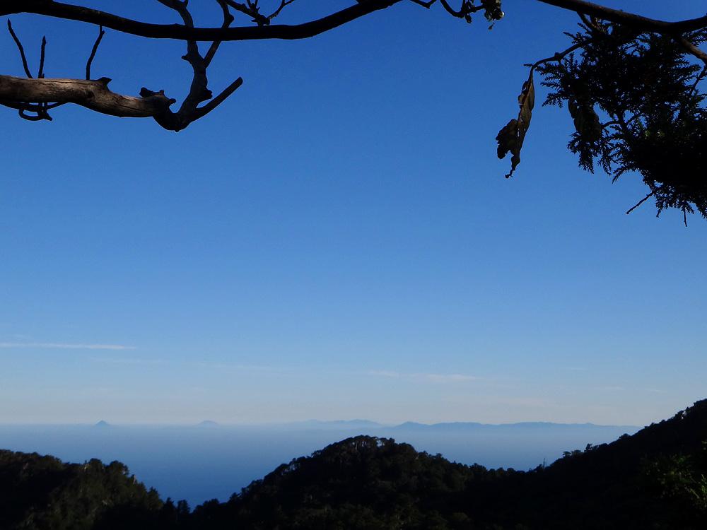 屋久島の画像 p1_6