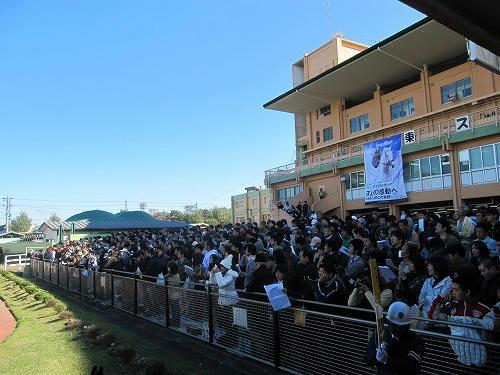 名古屋競馬