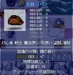 2009_3_13_2.JPG