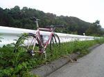 080824_kashinaga.JPG