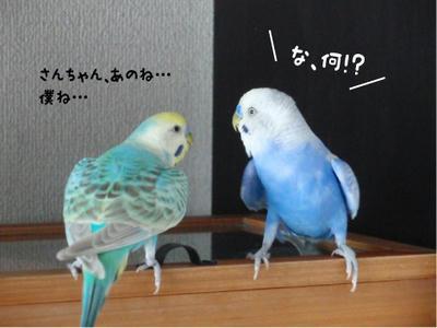 merry_sun.kaiwa1.jpg