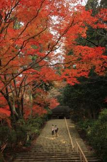 室生寺の若い二人