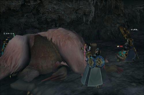 HC変種ババコンガは実は初狩猟でした。