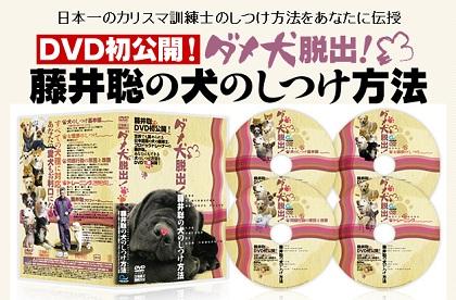 ドッグトレーナー藤井聡の「犬のしつけ教室」感想と特徴を報告