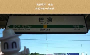 change4_Sakura.jpg