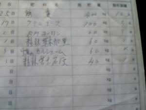 31-3.jpg