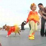 フロリダ謎の祭り、ファンタジーフェスタ