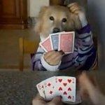 事務犬・ディナー犬~人間型イヌの世界~