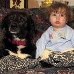 赤ちゃん&ドッグ