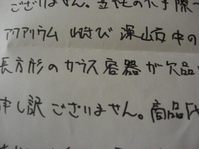 CIMG4196.JPG
