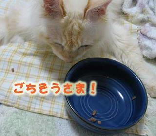 gochinarimashita