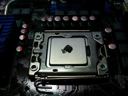 P1060499.jpg