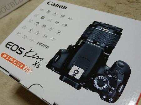 P4010063.jpg