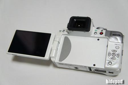 DSC00313-2.jpg