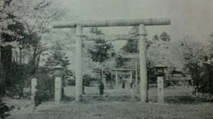 sakurayamaA2.jpg