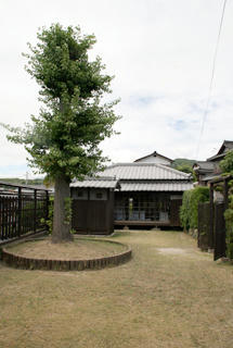 shirakabe-3.jpg