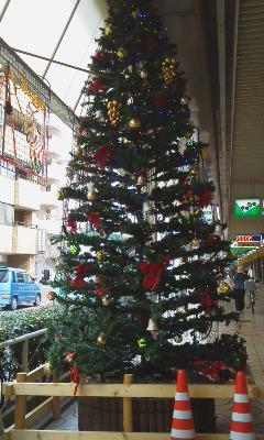 BigXmastree2