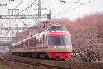 20090404lse_n.JPG