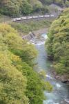 20090506_3.JPG