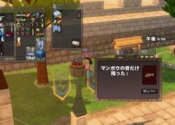 mabinogi_2009_10_04_001.jpg