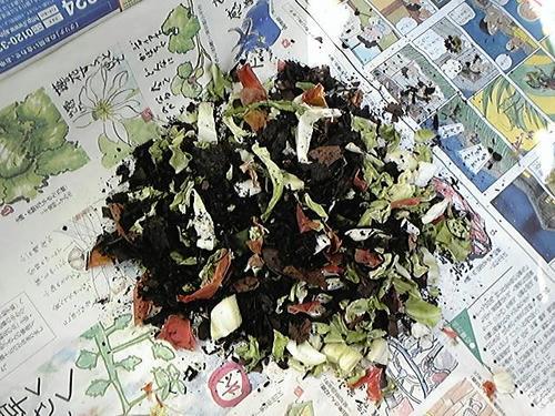 野菜くずと腐葉土MIX