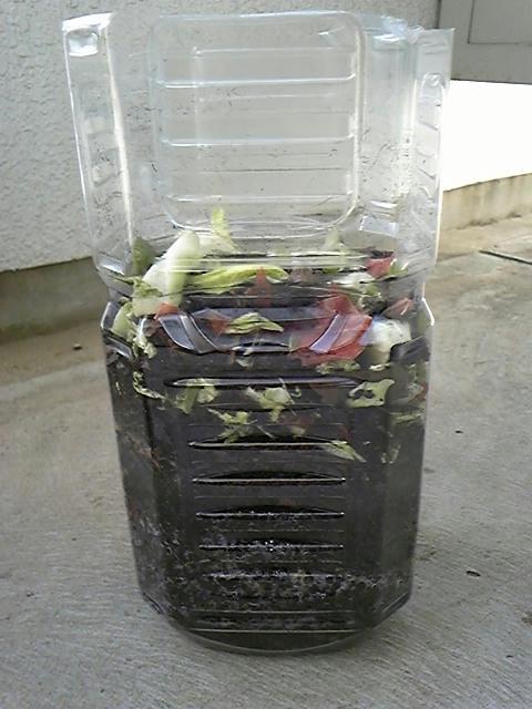野菜くずと腐葉土ペットボトル2