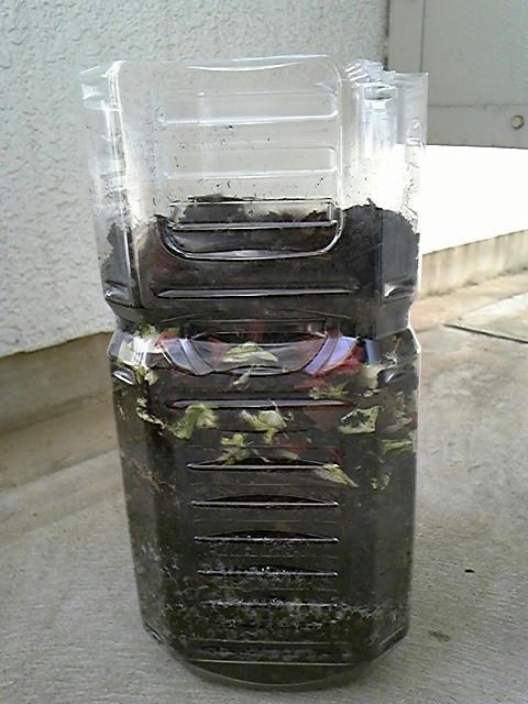 野菜くずと腐葉土ペットボトル腐葉土2