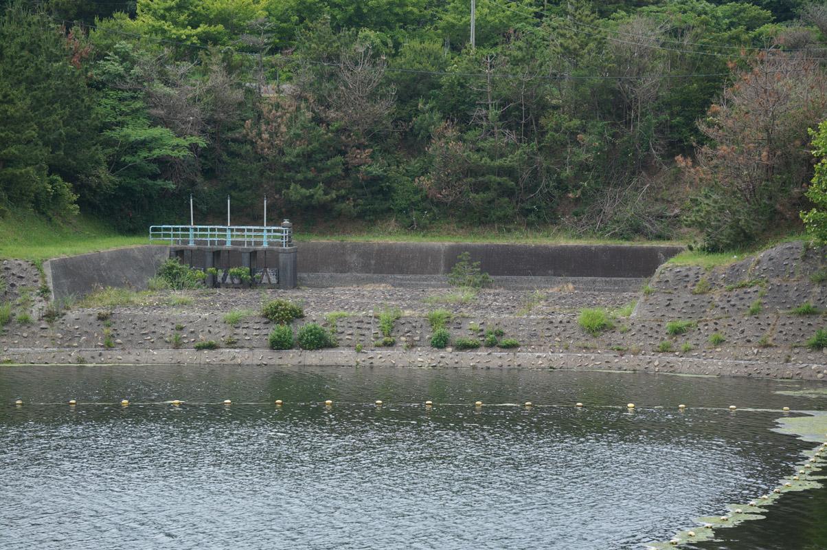 dam19_05.jpg