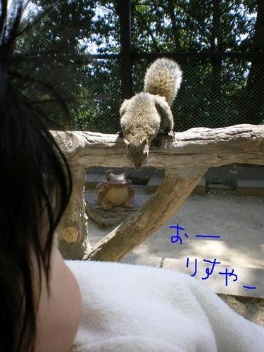 IMGP4189.JPG