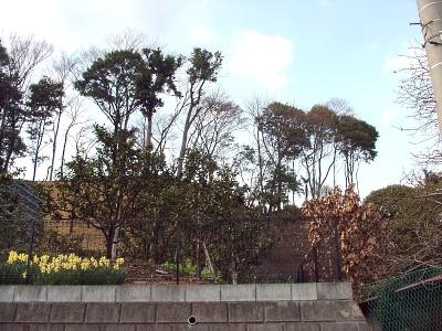 茅ヶ崎城その1
